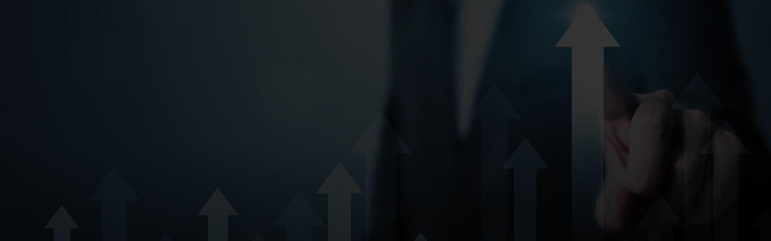 NetSuite erp provider