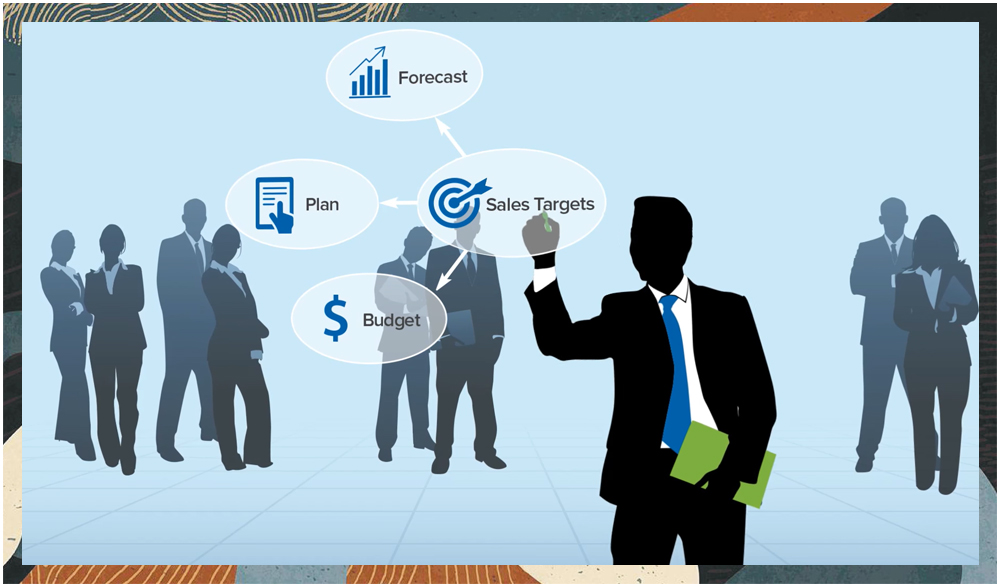 NetSuite for the Sales Manager